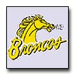Click here to view the Broncos web site